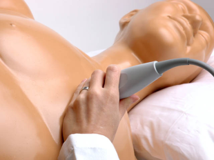ultrasound simulator training for residents