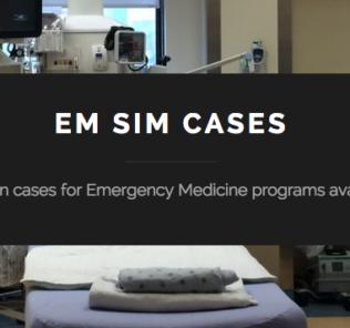 EM SIM CASES