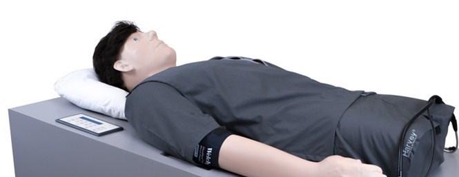 cardiopulmonary simulator