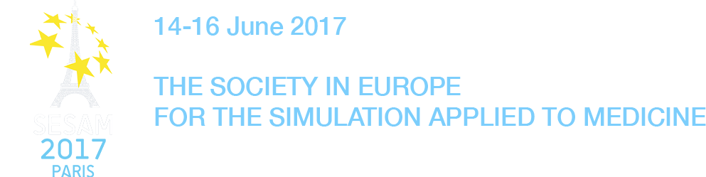 simulation conference france