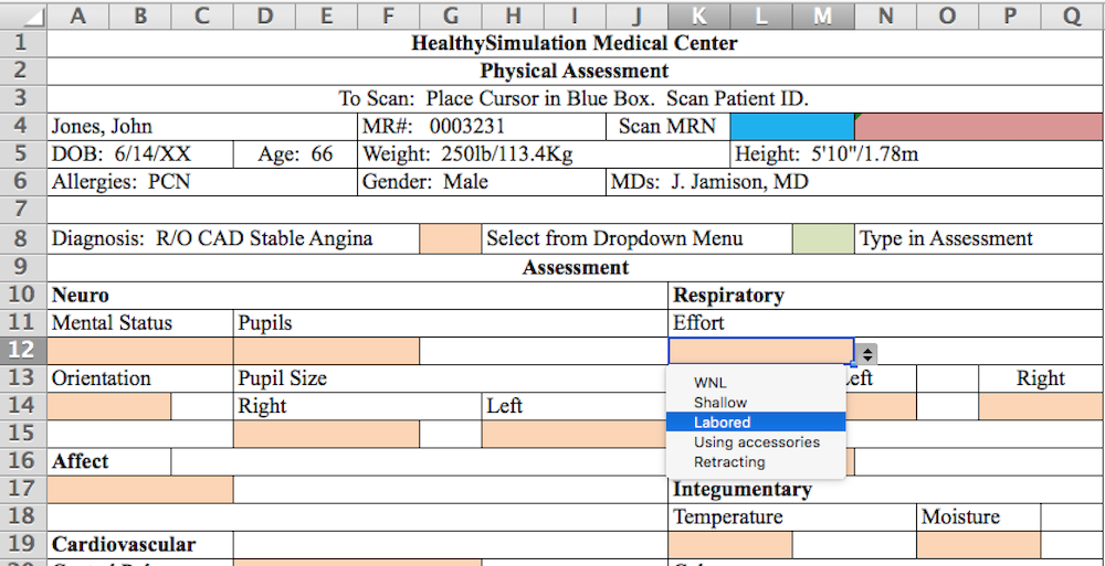ehr physical assessment document for simulation includes