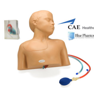 Pediatric Ultrasound Trainer
