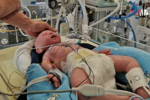 lusi baby simulator