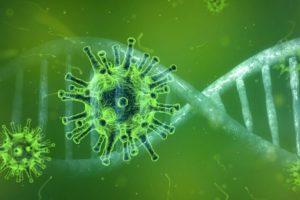 coronavirus simulation